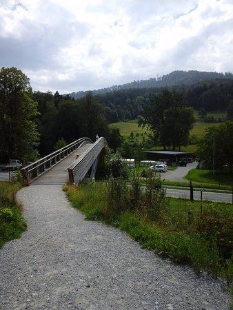 Wildnispark Zurich Langenberg: The bridge going to the car park