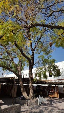 Centro de Desarrollo Artesanal Indigena CEDAI
