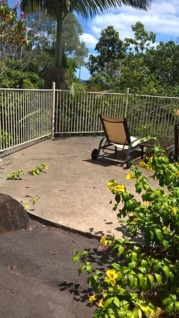 Cooroy, Australia: Cement top of a large watertank that is set into the gardens.