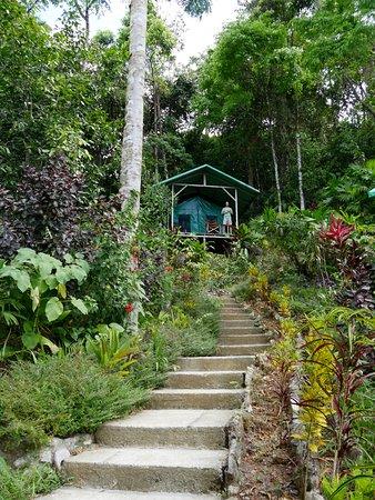 Carate, คอสตาริกา: Ik sta hier op de veranda van een 'tent'