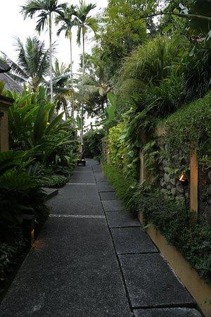 Foto de Komaneka at Tanggayuda