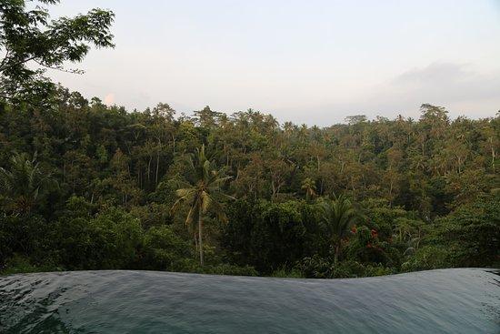 Komaneka at Tanggayuda: Nekonečný bazén
