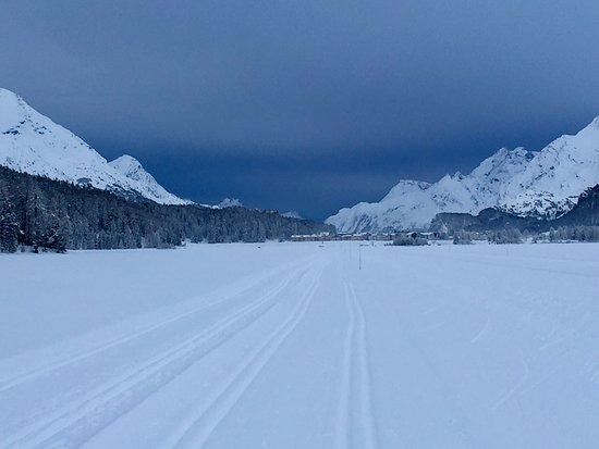 Silvaplana, Switzerland: Langlaufparadies