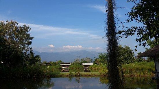 Foto Bueng Pai Farm