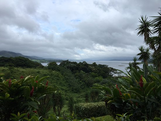 Nuevo Arenal, Costa Rica: View from our patio