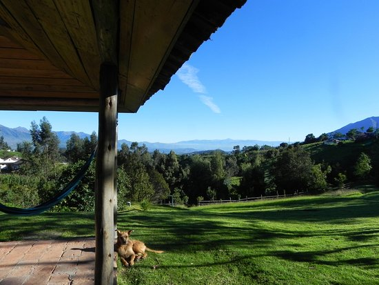 La Luna Mountain Lodge: View of Otavalo from the main building. Lucy the dog taking in the morning sun.