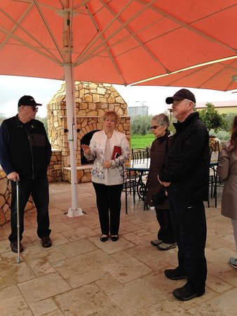 Winters, Kaliforniya: Learning about growing olives with Karen
