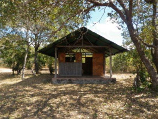 Kasungu, Malawi : Safari tent