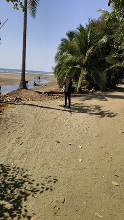 Province of Puntarenas, Costa Rica: Away from the water, sandy walk