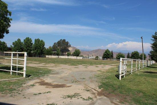 Rancho Los Potrillos