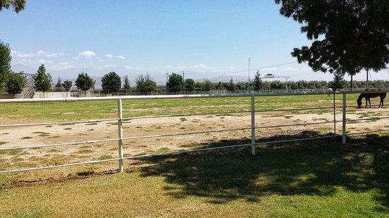 Woodlake, CA: Pasture and main entrance