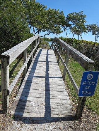 Belleair Beach, FL: Boardwalk to the beach through the mangroves