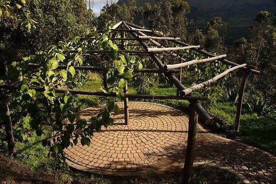 San Pablo Del Lago, Ecuador: Meditate in our exterior spaces