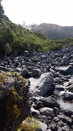 Taranaki Region, New Zealand: Looking up the moutain from top of wilkies pools