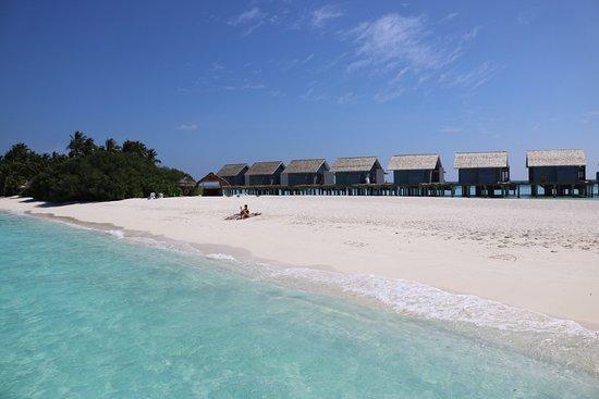 Kuramathi Island Resort Picture Of Kuramathi Maldives Tripadvisor