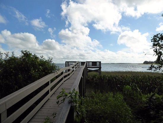 Leesburg, FL: Great boardwalk and pier