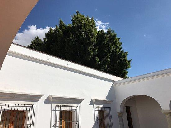 Museo de Arte Contemporaneo de Oaxaca (MACO): photo2.jpg