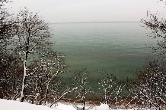 Lake Bluff Bird Sanctuary照片