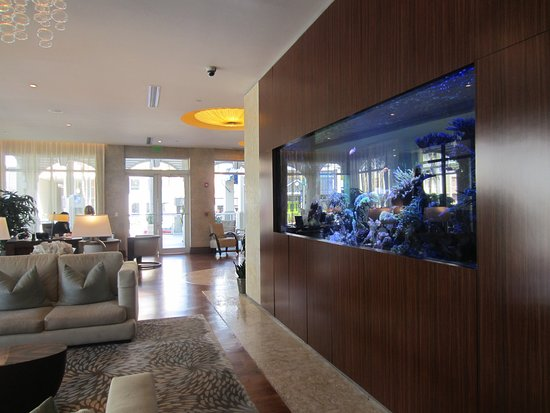 Seagate lobby with aquarium - Picture of The Seagate Hotel & Spa