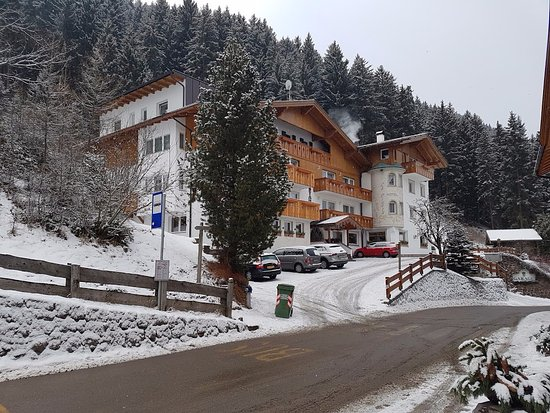 Hotel La Pineta Photo