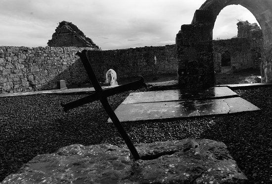 Эннис, Ирландия: Killone Abbey, Newhall, Ennis, Clare, Ireland.