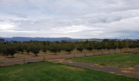 Hagley, Australia: view from the deck