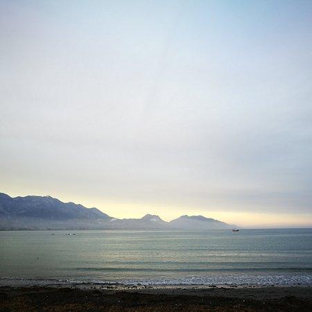 Kaikoura, Nueva Zelanda: IMG_20170204_132206_931_large.jpg