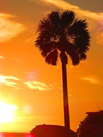 Sunset as seen from the Beach Walk