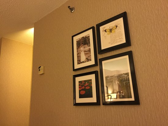 Maryland Heights, MO: Sheraton Westport Plaza Hotel St. Louis