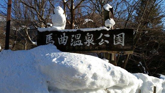 Kijimadaira-mura, Japan: 雪景色はとてもよいですね。  ただ、内湯も露天も小さいので 混雑します。  入口の道路は急坂なので 雪が降ったときは要注意ですよ。