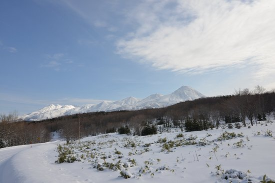 Hokkaido Photo