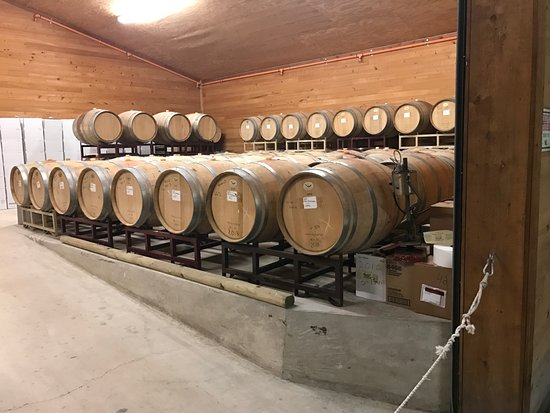 Sisterdale, TX: Barrel Room