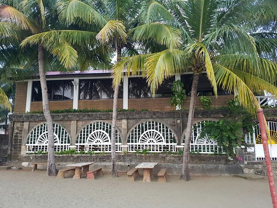SunBloom Resort: photo3.jpg