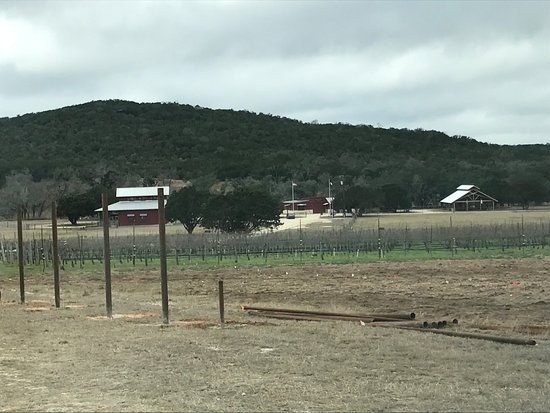 Comfort, TX: Winery from the road.