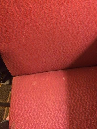 Super 8 Mishawaka/South Bend Area: COMPUTER CHAIR. SHREDDED CHEESE AND WHITE STUFF IN CHAIR
