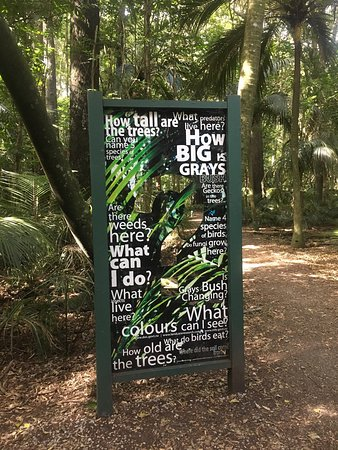Gray's Bush Scenic Reserve Walks