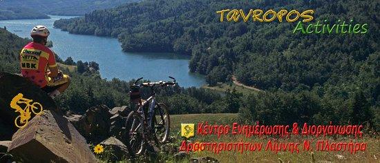 Tavropos
