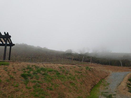 Jamul, CA: Deerhorn Valley Vineyards