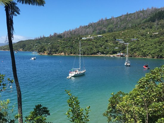 Queen Charlotte Track : Some of the sights on the QC