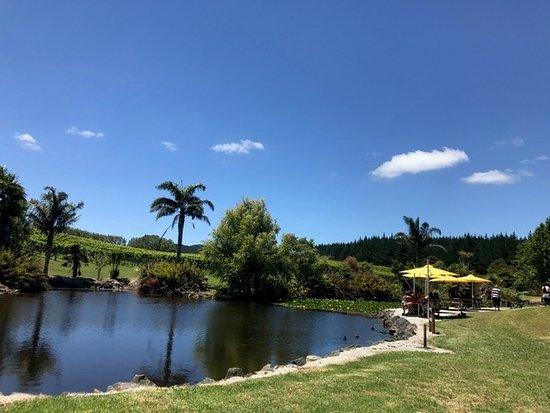 Waimauku, Νέα Ζηλανδία: 敷地内には池も