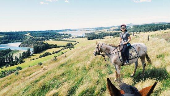 Springfield, Nuova Zelanda: That view!