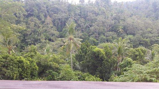 Komaneka at Tanggayuda