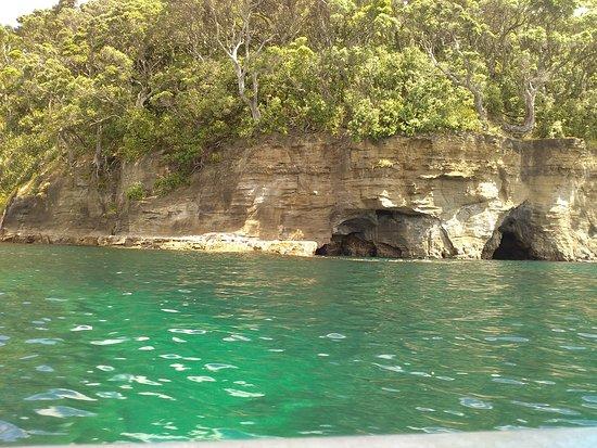 Leigh, Nueva Zelanda: surounding view--awesome