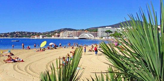 Hotel Le Chardon Bleu Plage Sainte Maxime