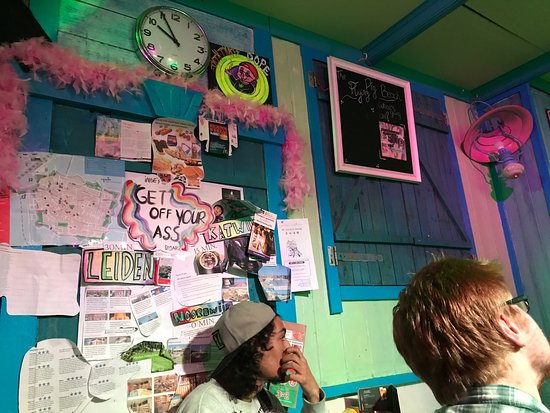 Flying Pig Beach Hostel: photo1.jpg