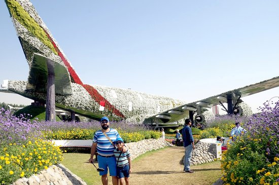 dubai miracle garden the jet plane covered with flowers miracle garden dec 2017 - Dubai Miracle Garden