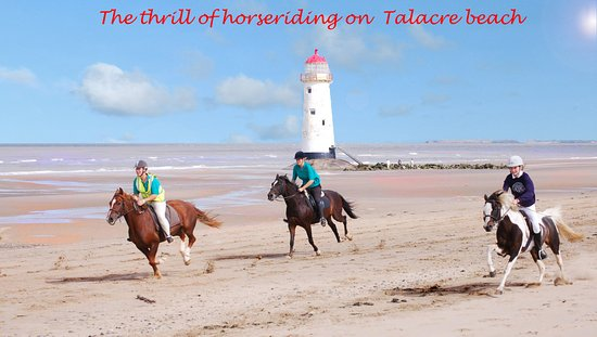 Flintshire, UK: Novice Hacks for the whole family to Riding on Talacre Beach for the experienced rider