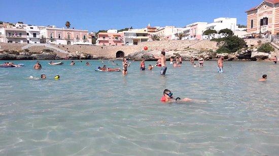 https://media-cdn.tripadvisor.com/media/photo-s/0e/5b/8f/a9/spiaggia-santa-maria.jpg