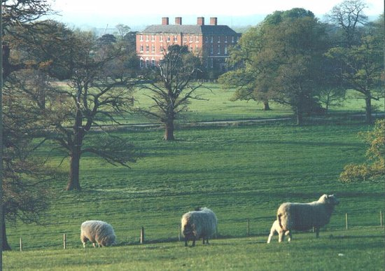 Walton on Trent, UK: Catton Hall & Park