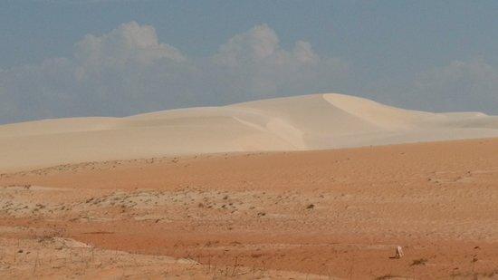 Areia Branca, RN: Dunas rosadas